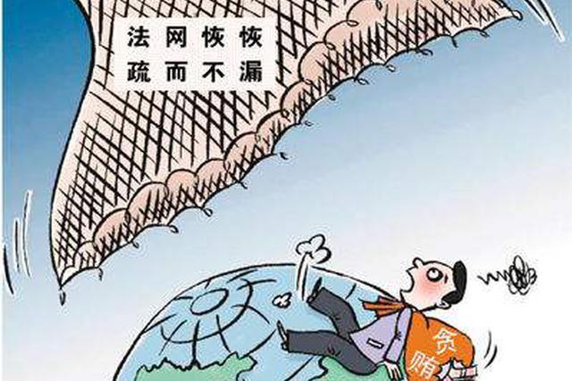 岳阳通报4起扶贫领域工作作风不实典型案件