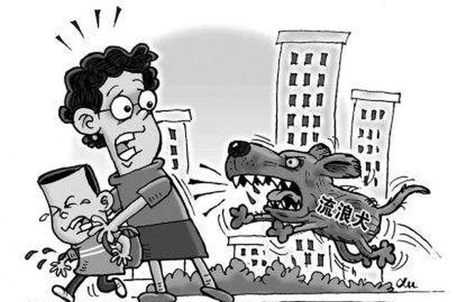 长沙两小孩逗狗被扑咬 路人施救被咬伤