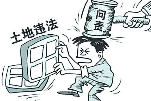 非法占用11亩农用地采矿 岳阳一男子被拘役五月