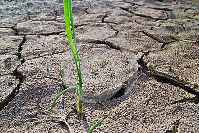 湖南后段如无较强降雨过程 湘北等地干旱将持续发展