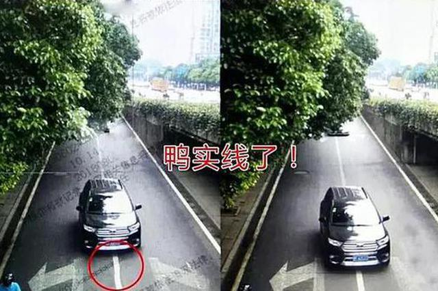 岳阳交通违法高发路段排行榜出炉 视频抓拍车主必看