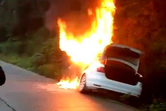 宁乡一小车起火致3人死亡 起火原因正在调查中