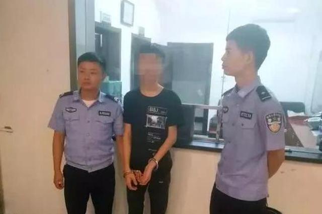 岳阳临湘破获多起盗窃车内财物案 抓获嫌疑人2名