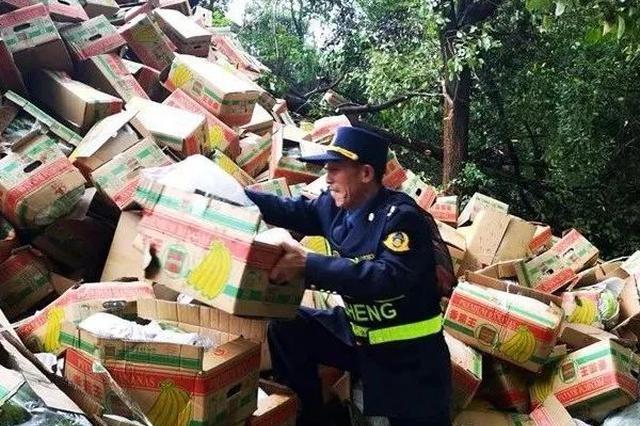 """高速上演""""香蕉保卫战"""" 货车侧翻货物遭群众哄抢"""