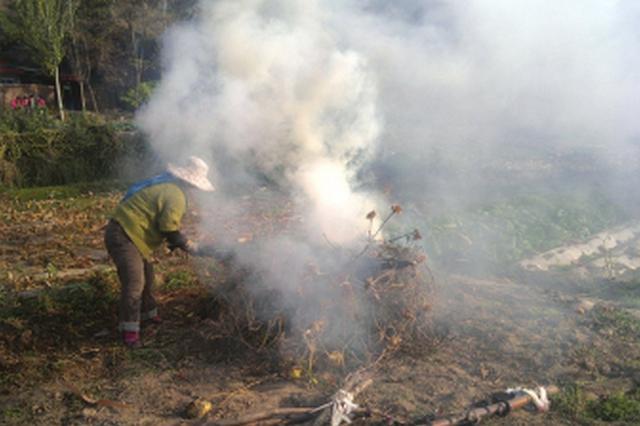 常德一村民焚烧秸秆被顶格罚款2000元