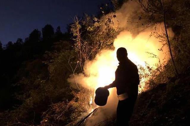 张家界:焚烧垃圾引发大火 现场浓烟滚滚