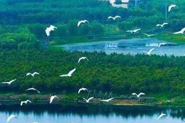 常德被列为申报国际湿地城市国家候选城市