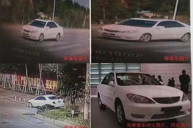 岳陽無牌小車撞上三輪車后逃逸 2名老人一死一重傷