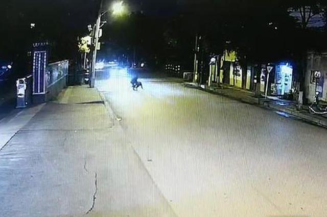 株洲:男子见到警察撒腿就跑 原来是网上追逃人员