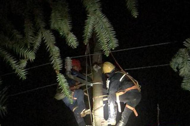 怀化中方县连夜除冰 覆冰严重的10千伏活水支线恢复供电