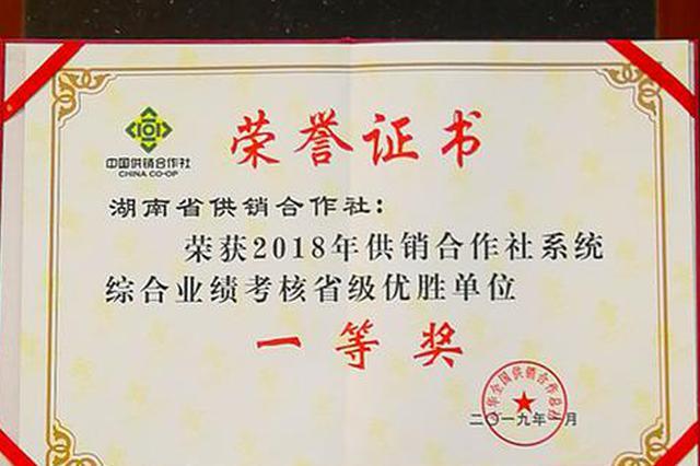 供销湘军强势崛起 年度综合考核喜获全国第二