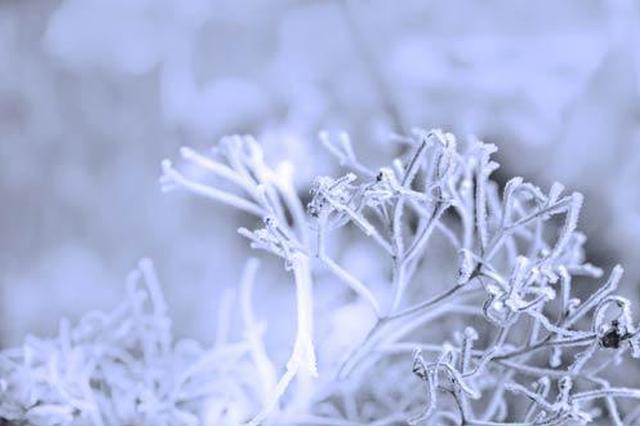 湖南未来7天多阴雨 15-16日局地有雪
