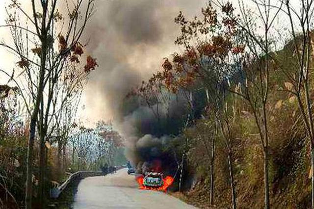 常德石门一小车撞树自燃 交警消防联手处置