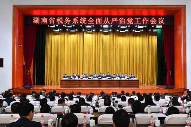 湖南省税务系统推进从严治党 高质量推进税收现代化