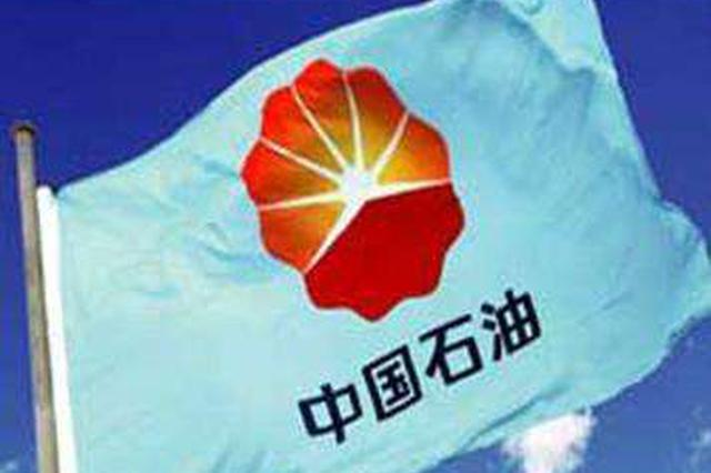 中石油原副总经理李新华接受审查调查