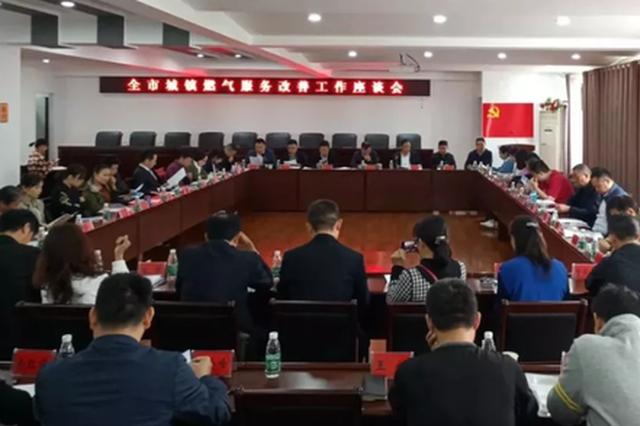 岳阳市城镇燃气服务改善工作座谈会顺利召开