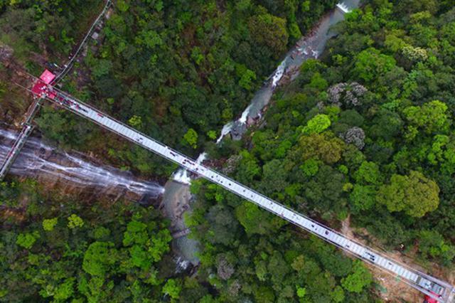 """""""中国最美森林""""榜单发布 郴州九龙江国家森林公园入选"""