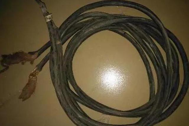 宁乡一男子瞄上幼儿园 近十万余元电缆线遭贼手!