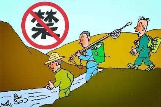 禁渔期电打鱼违法!冷水江法院审判一起非法捕捞水产品案
