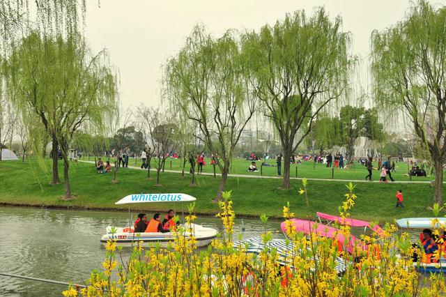 长沙河西将新增杨柳和莲坪两个公园