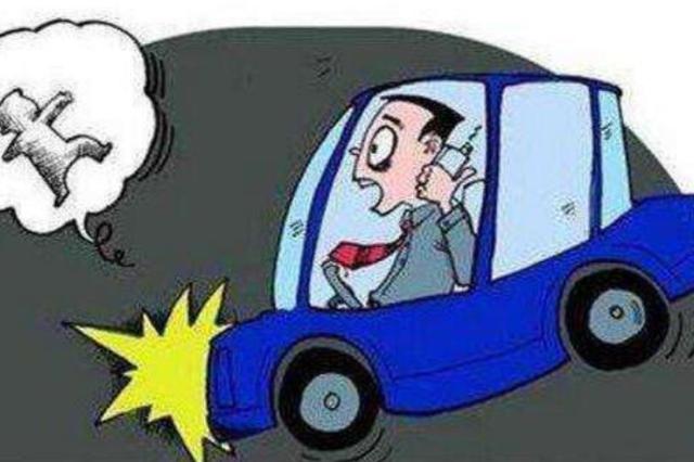 开车撞到人却辩称被石头砸到 该平江男子被判交通肇事罪