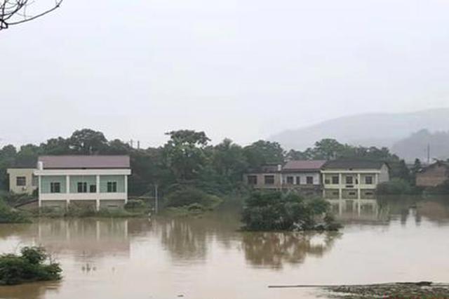 省农业农村厅:全力抗洪救灾 将农民损失降到最低