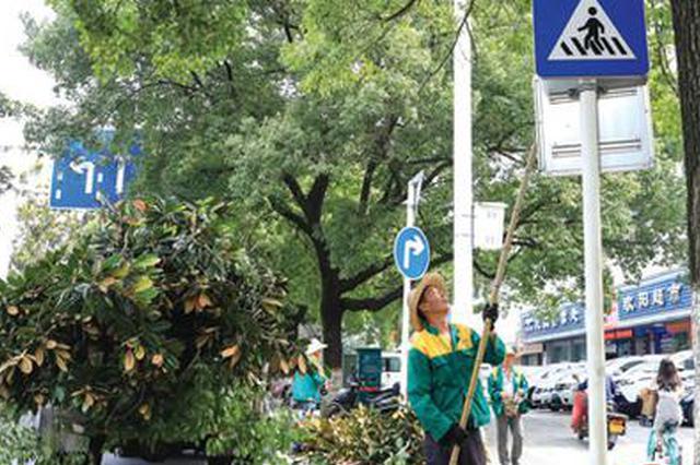 常德园林养护人员排查城区树木安全隐患