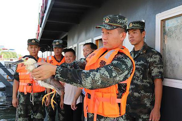 武警岳阳支队成功救助国家二级保护动物夜鹭