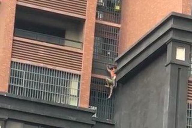 惊险!长沙一高层住宅起火浓烟滚滚 爷爷背着孙子爬外墙逃生