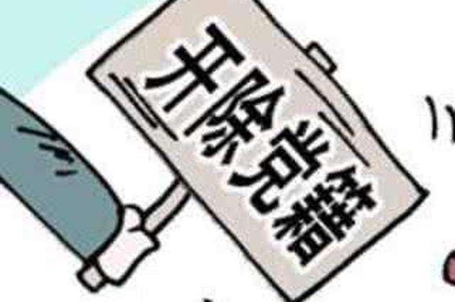 湖南湘西经济开发区管委会原副主任胡幼平被开除党籍