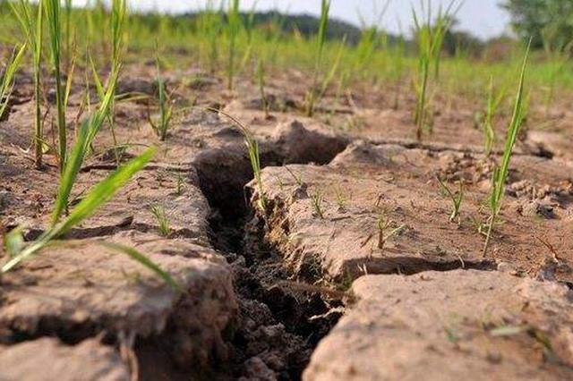 湖南积极应对多地出现的旱情