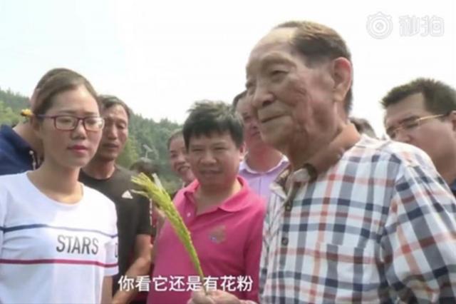 获国家最高荣誉当天,袁隆平去了一个地方......