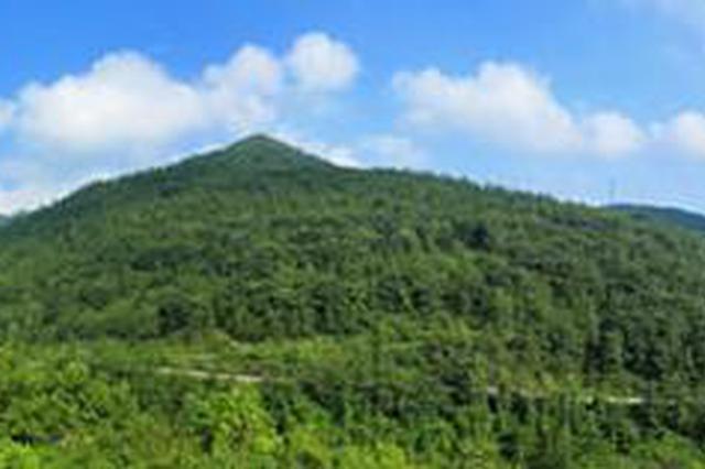 大地增绿农民增收!湖南20年退耕还林2160万亩