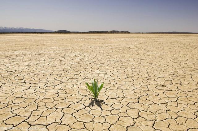 湖南遭遇严重干旱 省应急厅紧急下拨1400万元救助资金