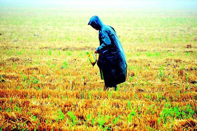 全省干旱逐步缓解:受旱作物减106万亩 送水人口减2.5万人