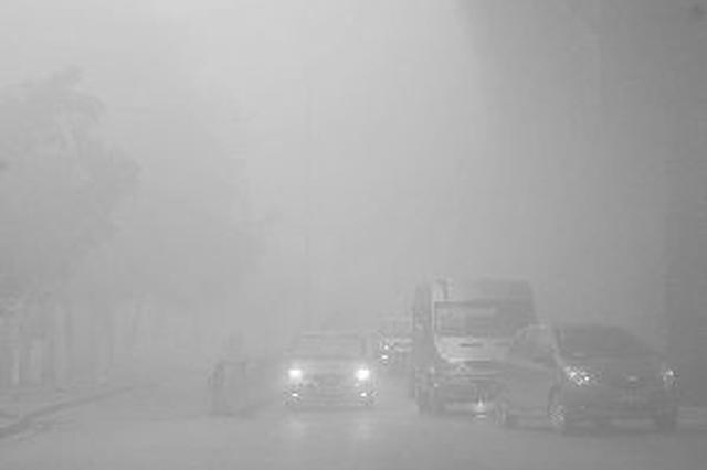 天气丨周末回温 出行注意大雾