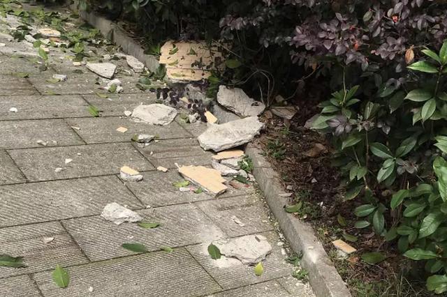 长沙高信向日葵小区瓷砖砸伤人!小区遇到这些问题怎么办?