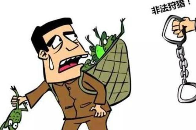 长沙县一男子抓35只野生蛙被判做义工20小时