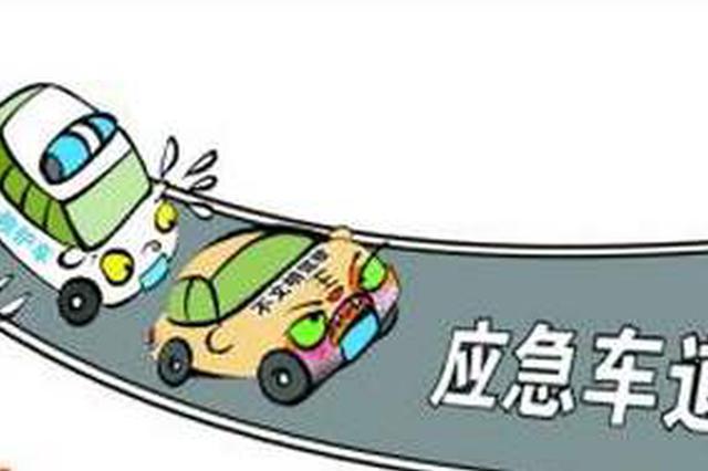 任性停靠应急车道 平江一司机为逃避检查 驾车撞警车袭警