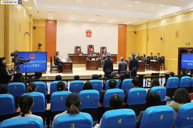 湖南省人大常委会原副主任向力力案一审:被控受贿6667万