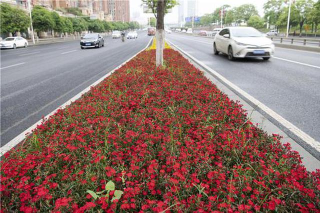 长沙欢迎你的方式如此酷炫——花侯路巨型花雕展示城市特色 长