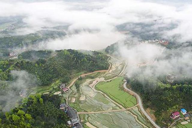 2020年农业产业强镇建设名单公示 湖南这14个乡镇入选