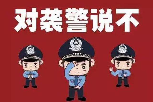 湖南公安严打袭警犯罪, 长沙一男子故意伤害处警民警获刑7月