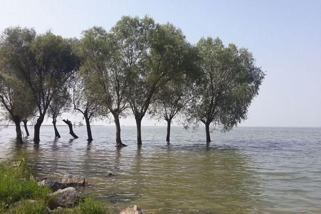 湖南紧急发布洪水蓝色预警 洞庭湖今年首迎洪水