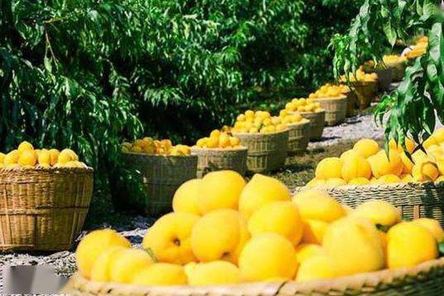 湖南销售扶贫产品超43亿元