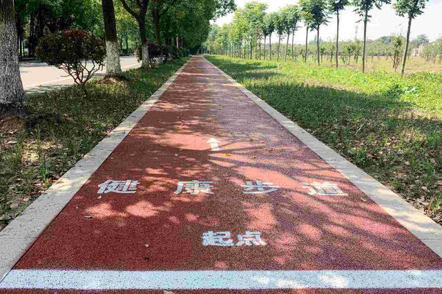 全民健身工作情况进展如何?湖南将建设 15 条以上潇湘健身步道