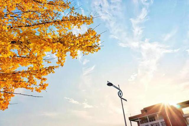太惊艳!湖南高校秋景大赏,快看看有你母校吗?