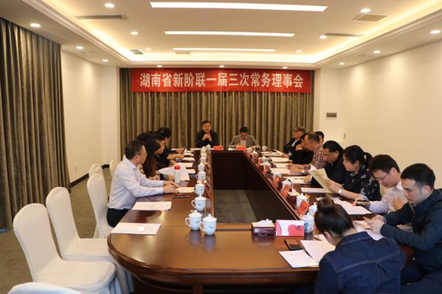 湖南省新阶联召开常务理事会,就贯彻落实十九届五中