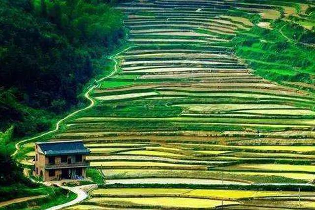 湖南启动国土空间规划优秀案例展评活动