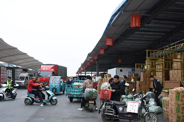 中国供销·郴州农副产品物流园蔬菜批发区迎来人流车流高峰。